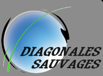 Diagonales Sauvages